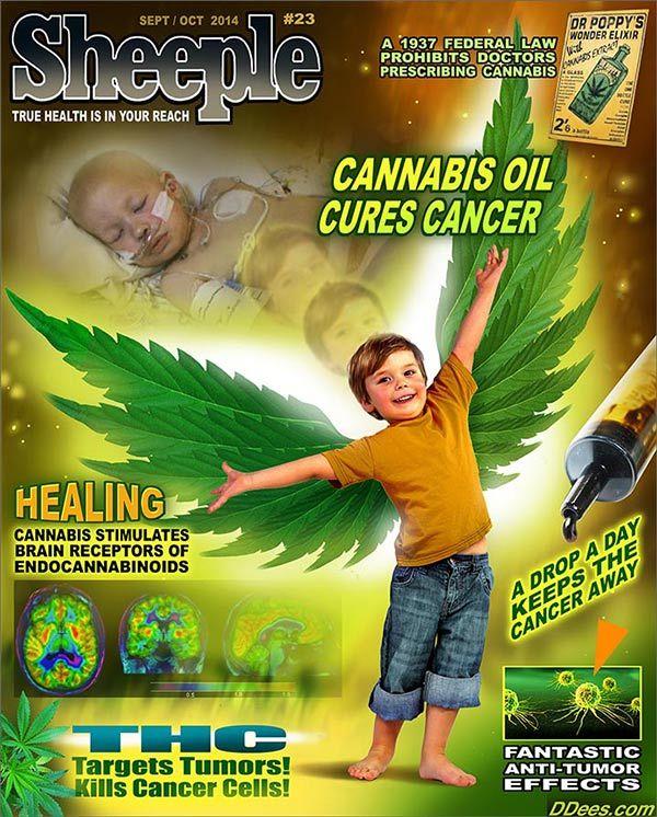 cannabis oil cures cancer...........  http://www.cureyourowncancer.org/how-cannabis-oil-works.html