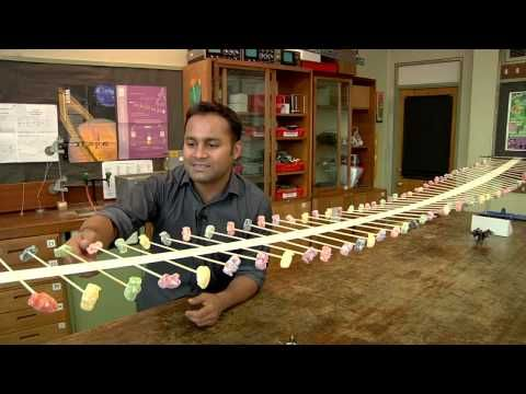 How to build your own Wave Machine physics demo | The Kid Should See This