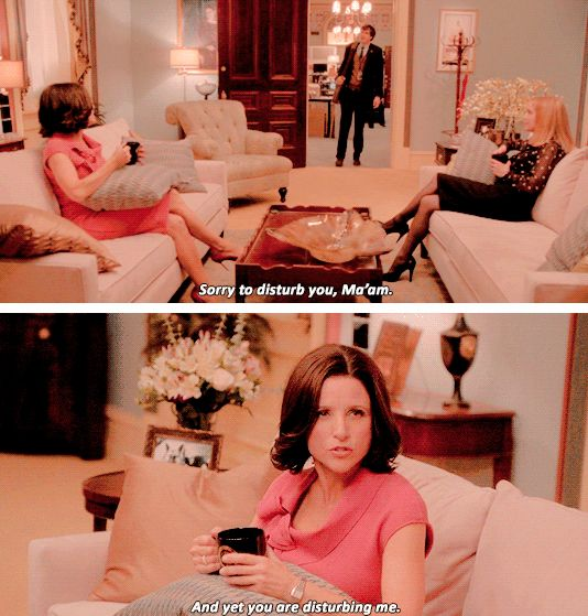 "When Selina went subtle with this burn: | 26 Insane ""Veep"" Insults We're Still Laughing At"