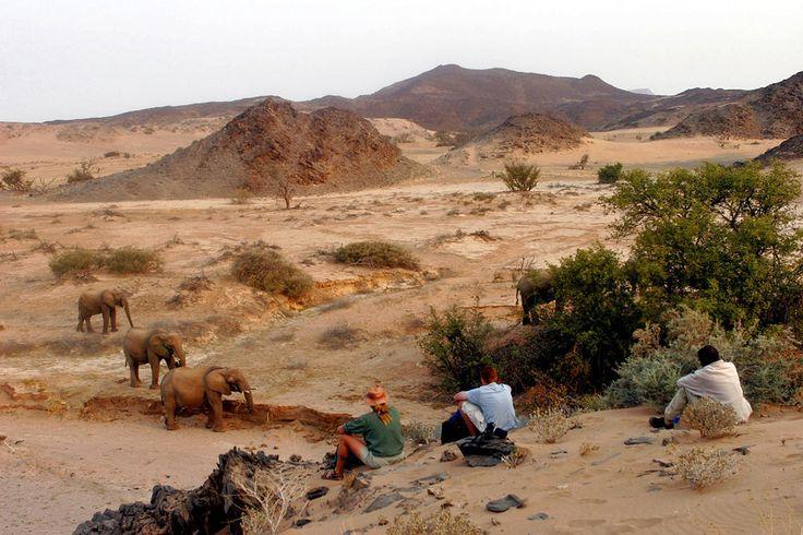 edVenture Retreat safari venue Doro Nawas, Damaraland, Namibia.