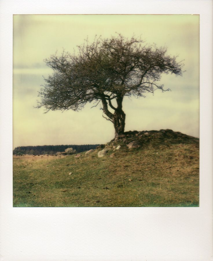 H Nengrab By Peter M Nnig On 500px Impossible Polaroid