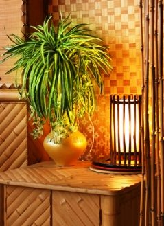 Tropical Interior Design Ideas   Bamboo And Lots Of Lush Green Plants Gives  A Lush Exotic