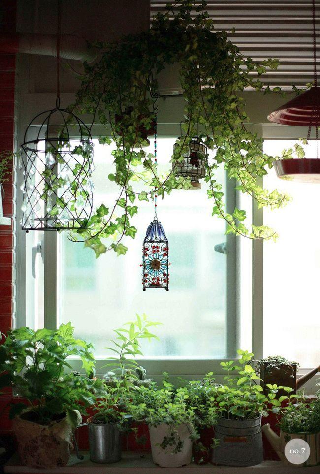 17 best images about decoracion con plantas on pinterest gardens office plants and planters. Black Bedroom Furniture Sets. Home Design Ideas