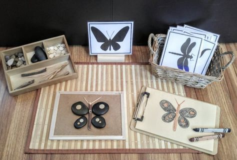 Loose Parts Insect/Bug Exploration Build a Bug Fine Motor