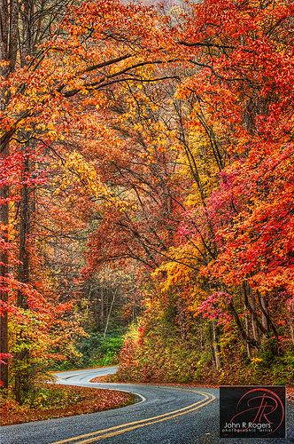 Autumn in Austin, Texas