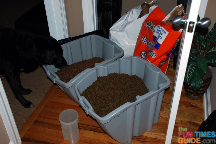 Want All Natural Dog Food Delivered For FREE? See Why We Love Nature's Select Pet Food Delivery Service | Fun Times Guide to Franklin / Nashville TN