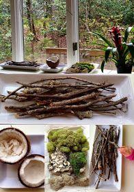 Reggio inspired nature table