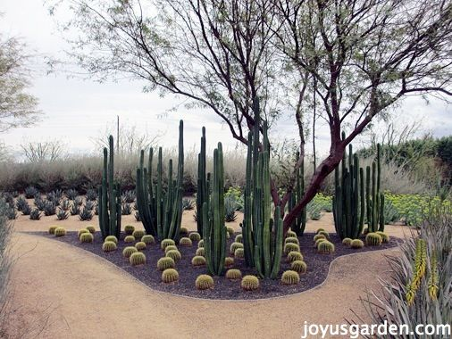 Sunnylands Center & Gardens | Joy Us GardenJoy Us Garden