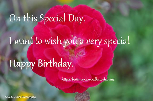 Happy Birthday Picture Card to Wish on Special Day with Rose Picture