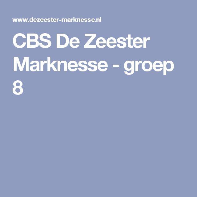 CBS De Zeester Marknesse - groep 8