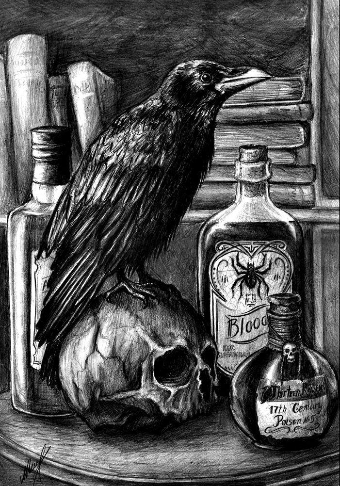 Best Halloween Pics Images On Pinterest  Halloween Art