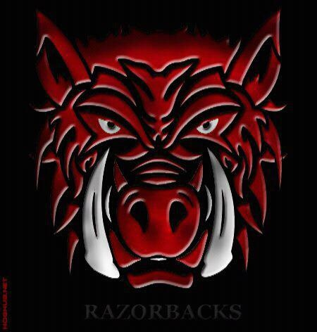 17 best images about arkansas fever my home my alma mater my team