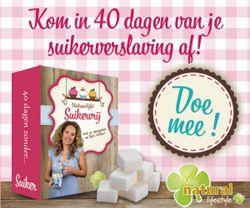 Suikervrije ontbijtkoek/ kruidkoek (+ glutenvrije versie) | SuikerWijzer