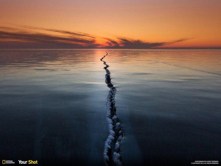クラゲと泳ぐ湖、揺らめくオーロラ......ナショジオが選ぶ2015年のベストショット(画像)