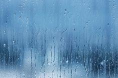 Rain Drops and Condensation stock photo