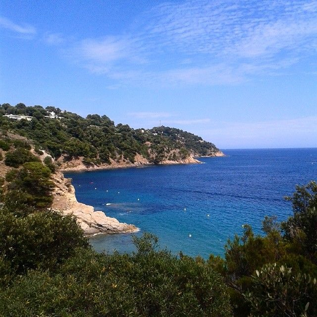 #summer #sunshine #sea #bluesky #côte #crique #bonporteau #sentier #cavalaire #cavalairesurmer #var #plage #view #paradisiaque #vegetation #Padgram
