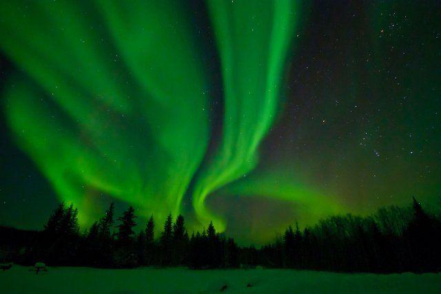 """La più grande riserva di """"cielo stellato"""" si trova in Canada  Il  Parco Nazionale Wood  Buffalo, che si estende da Alberta ai Territori del Nord-Ovest, è stato dichiarato la scorsa settimana il più grande """" cielo stellato"""" del mondo  dalla Royal Astronomical Society of Canada.  Lo scopo di questa organizzazione:  proteggere l'ambiente notturno dagli effetti di inquinamento luminoso."""