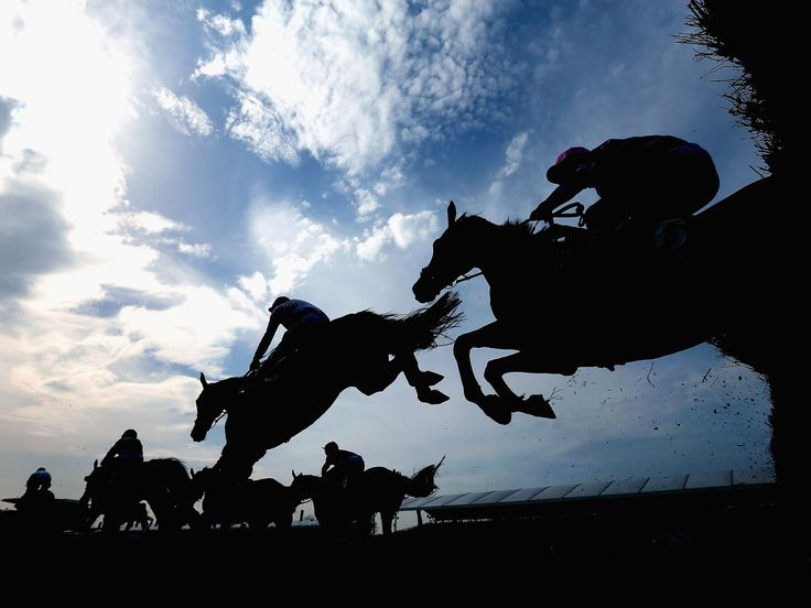 Four Horses Have Died at This Year's Grand National Meeting at Aintree - Two of the horses died after falling on their heads. http://www.independent.co.uk/sport/racing/grand-national-2016-four-horses-dead-at-aintree-meeting-so-far-after-mid-race-injuries-a6976496.html
