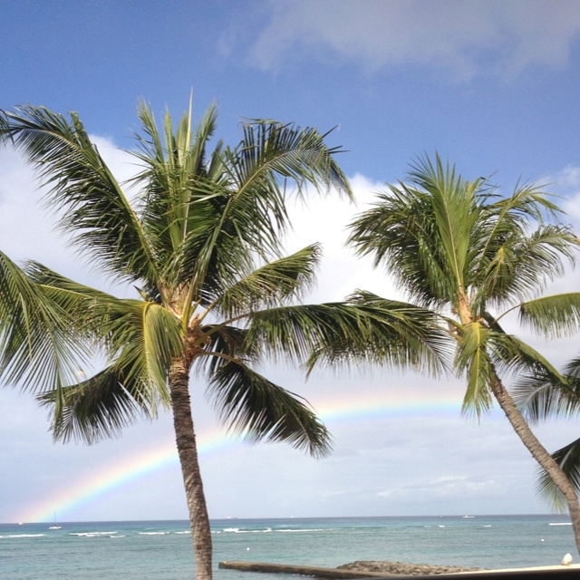 Breakfast with a rainbow. Waikiki beach Hawaii!