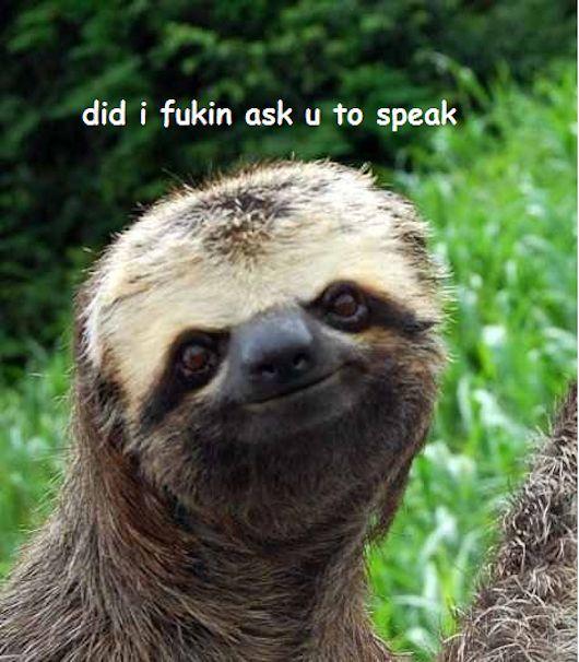 Dirty Sloth Tumblr