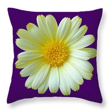 Throw Pillow featuring the photograph Yellow Summer On Purple by Johanna Hurmerinta