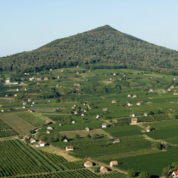 Panorama, Villány Wine Region.