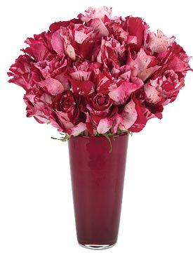 Crazy In Love Roses