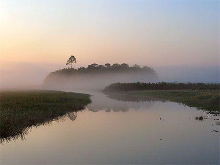 Kaw - Guyane. Sur routard.com, retrouvez les meilleures photos de voyage des…
