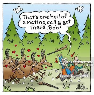 Funny Cartoons Hunting Hunting Amp Fishing Pinterest