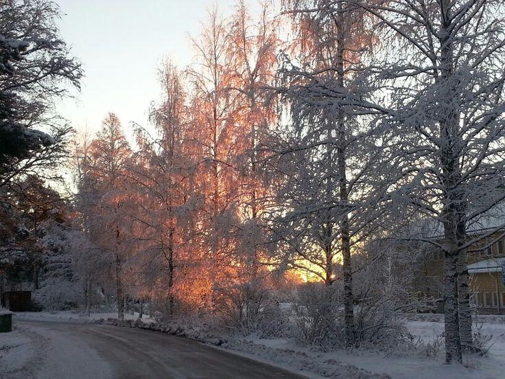 Beuatiful morning / vacker morgon
