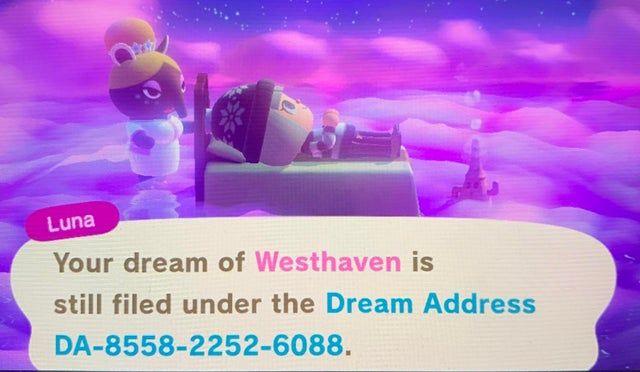 Southern Hemisphere Island In Progress Acnhdreamcodes Animal Crossing Game Animal Crossing Nintendo Switch Animal Crossing