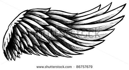 Heart with wings Silhouette | Hand Drawn Wing with graphite shading stock image 450.244