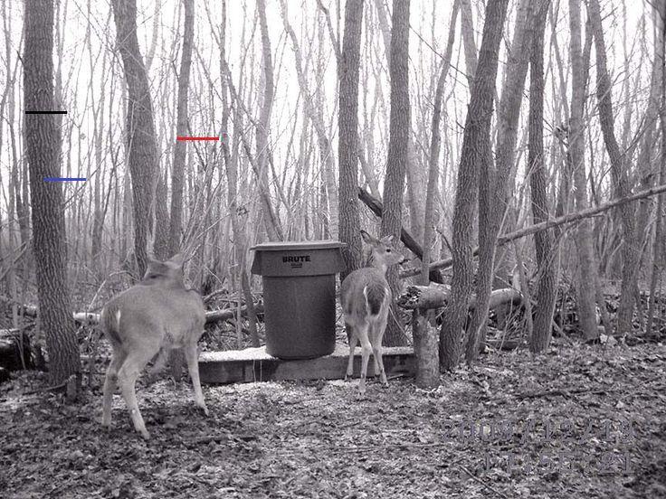 Diy Deer Feeder Inspirational Gravity Deer Feeder Plastic