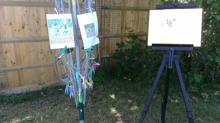 Painting in my garden for Surrey Artists' Open Studios - best use ever for the washing line! See we.carolineskinnerart for details - open 3rd, 4th, 10th, 11th, 17th and 18th June 2017 in Merstham, Surrey.   #surreyopenstudios #surreyartistopenstudios #artstudio #animalart #Merstham