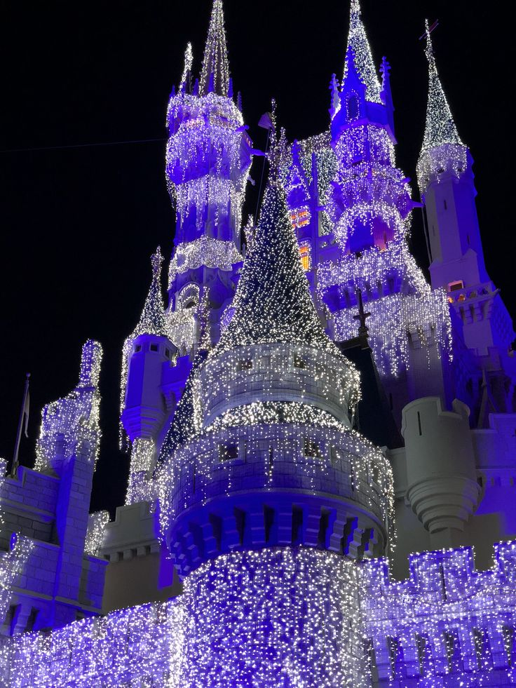 Visit Disney during the holidays and see