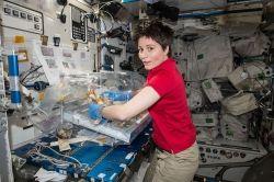 Domani, Samantha Cristoforetti farà ritorno sulla Terra dopo una missione sulla Stazione Spaziale Internazionale durata duecento giorni.