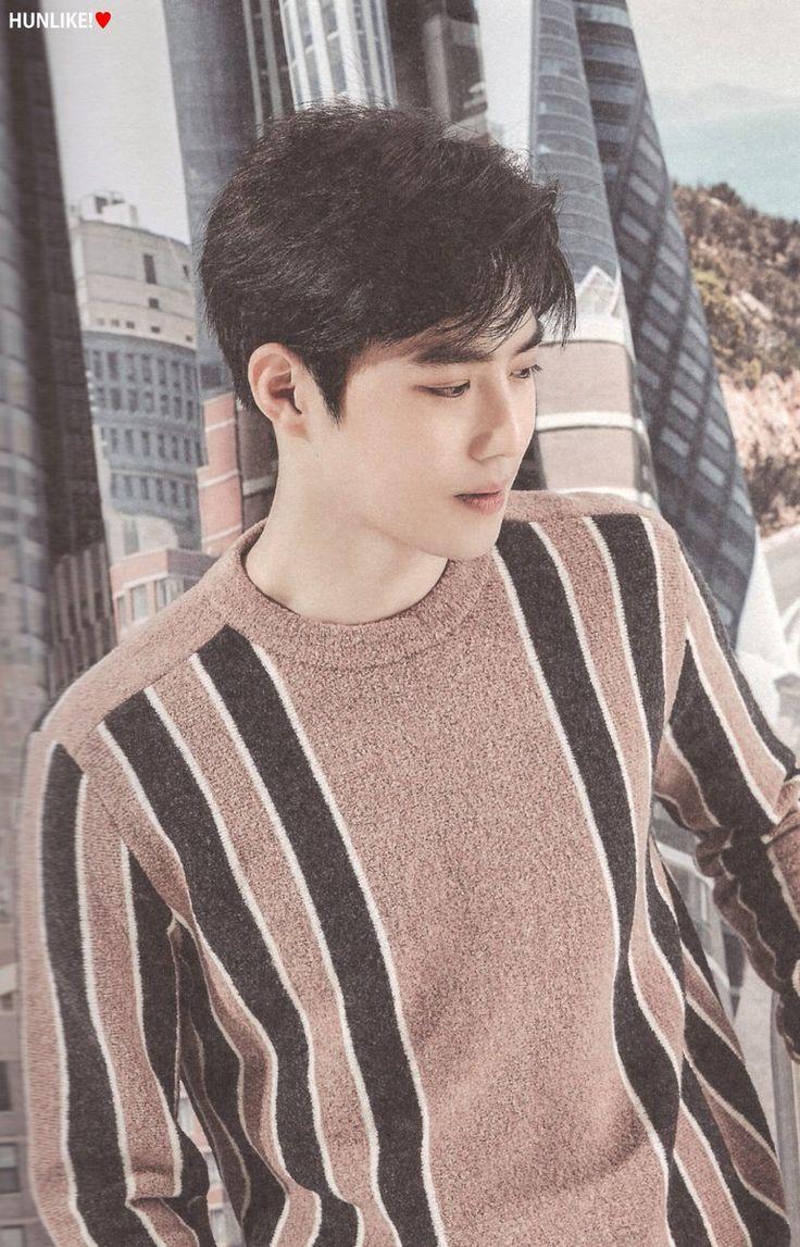 EXO (Suho) 2017 Season Greetings