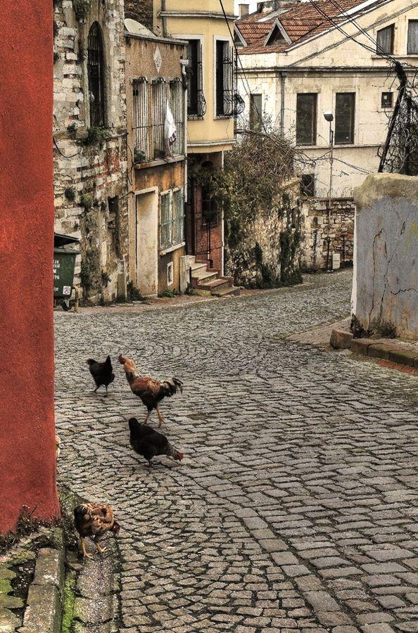 """Istanbul-Balat  """"sokak(Balat 2011)"""" by e photography"""