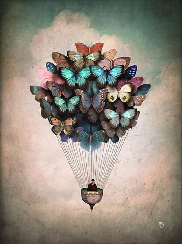 "Christian Schloe | ""dream on"""