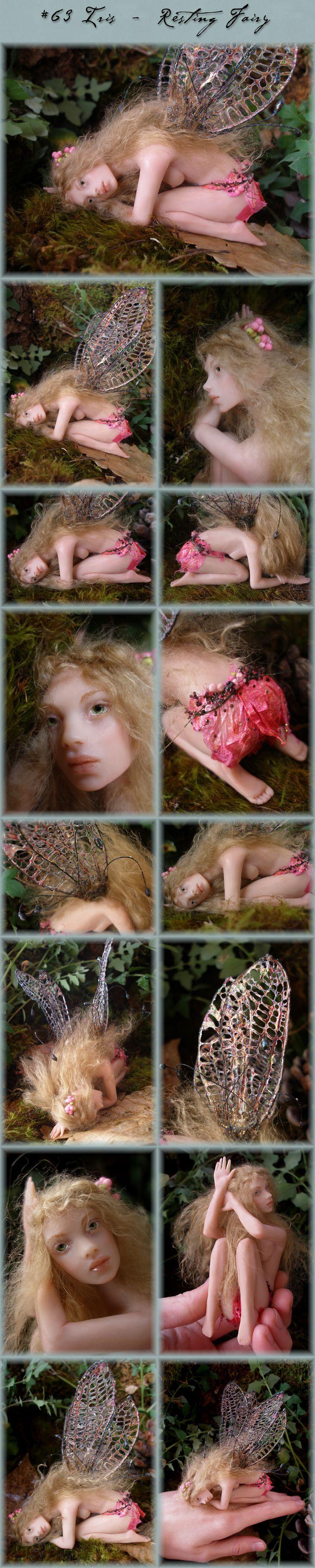 Nenúfar Blanco ~ #63 Iris - Resting Fairy