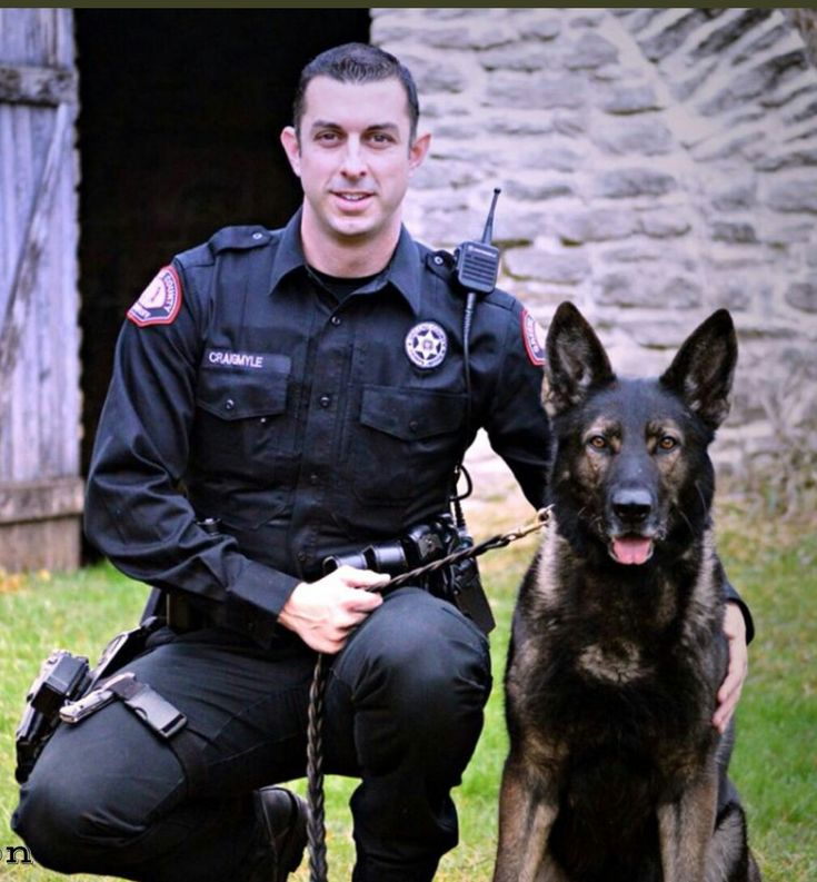 K9 Lor of LivePD | K9's & MWD's | Police dogs, Military ...