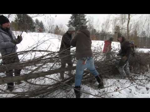 Hedge Laying at Whole Systems Design