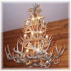 one of our gorgeous whitetail deer antler chandeliers no animals are ever harmed - Antler Chandelier
