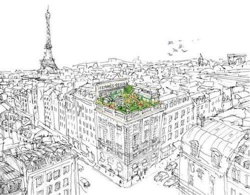 """Illustration for Hermès perfume """"Un jardin sur le toit""""- a garden on the roof"""