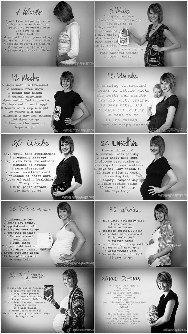 Evolution of pregnancy, every 4 weeks in numbers. www.nurselovesfarmer.com