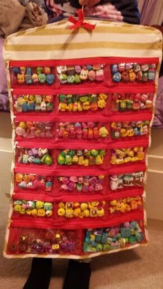 Shopkins toy storage idea. Hanging jewelry organizer $9.99 @ TJ Maxx. Will work for Lego mini figures too.
