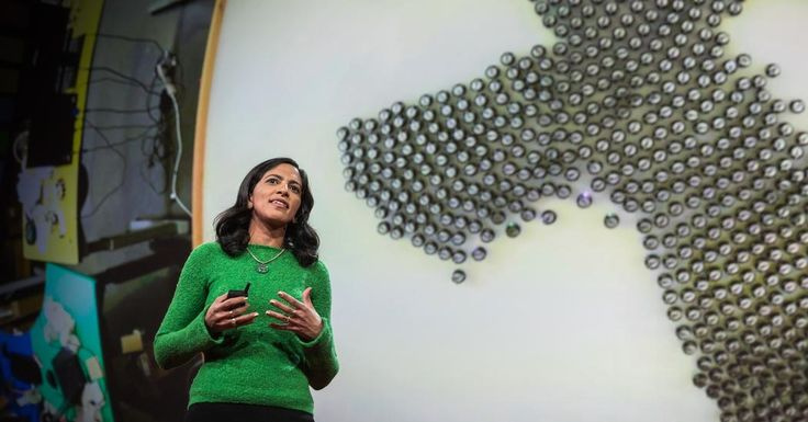 Radhika Nagpal: What intelligent machines can learn from a school of fish | TED Talk
