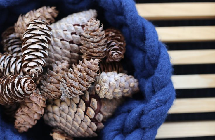 #pinecones #Homestaging #retrostyle #interiorstyling by #placesandgraces