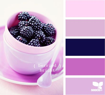 berried bright: Design Seeds, Berries Bright, Bedrooms Colors, Colors Schemes With Dark Blue, Pink And Purple Colors Schemes, Colors Palettes, Blue Purple Bedrooms, Bright Colors, Paintings Colour