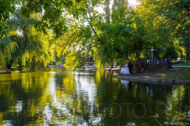 Городской сад. Осень. Краснодар